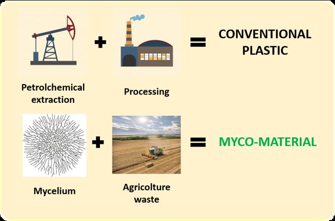 Conventional foam/plastic vs myco-material